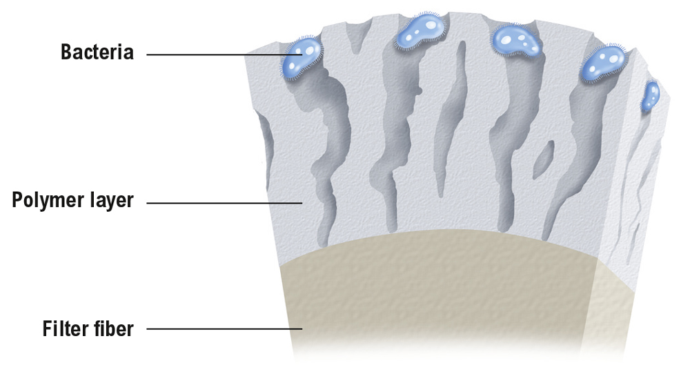 Schematic representation of the BinNova Triple AIR media with bacteria